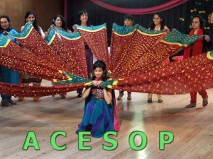 Associació Cultural Educativa Social i Operativa de Dones Pakistaneses (ACESOP)